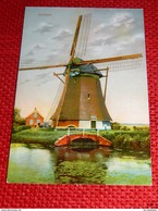HOLLAND  - NEDERLAND  - Molen - Pays-Bas