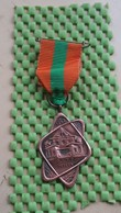 Medaille / Medal - Medaille - D.I.T.O Beilen 1962,afb. Psyc.inrichting Beilenoord - The Netherlands - Nederland