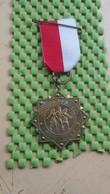 Medaille / Medal - Medaille - Schwarzwaldtocht Riessen ( Rijssen ) - The Netherlands - Niederlande