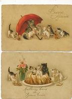 2 Cartes De Chats Sous Un Parapluie Et Dans Un Gateau . Etat Moyen - Cats
