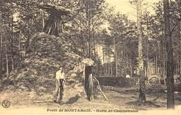 Forêt De Montargis - Hutte De Charbonnier - Cecodi N'223 - Montargis