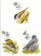 3389/91 - 3 Maximum Kaarten - Vogels Van André Buzin -cat 27.00 - 1985-.. Oiseaux (Buzin)