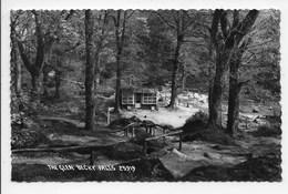 The Glen. Becky Falls - Chapman - Other