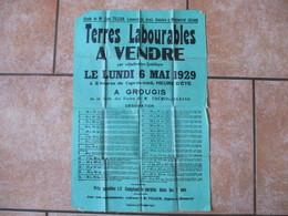 GROUGIS TERRES LABOURABLES A VENDRE LE LUNDI 6 MAI 1929 EN LA SALLE DES VENTES DE M. THEMIR-LEGRAND - Affiches