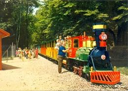 """France - Allier - Saint Pourçain Sur Besbre - """"Le Pal"""" - Le Petit Train Du Far West - CIM Nº 3.23.73.0122.03.253 - 6243 - France"""