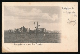 AVELGEM  VUE PRISE DE LA VUE DES PRAIRIES ( 1901 ) - Avelgem