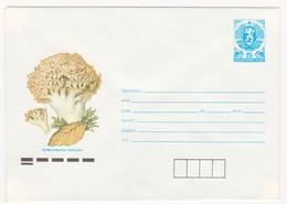 1990 Mushrooms P.Stationery Bulgaria /Bulgarie - Hongos
