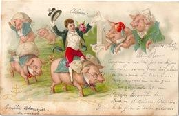 Cochons Carte Litho 1901 - Cochons