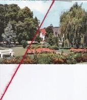 CP 57  - SAINT AVOLD  -  Le Parc   (1 Pli) - Saint-Avold