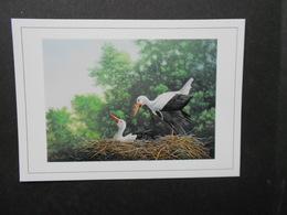 A . BUZIN  CARTE  DU LUXEMBOURG - 1985-.. Oiseaux (Buzin)