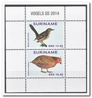 Suriname 2014, Postfris MNH, Birds - Suriname