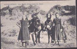 Middelkerke :  Une Partie D'Anes Dans Les Dunes (1910) - Middelkerke