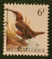 Bird Vogel Oiseau Pajaro Buzin 6 Fr Mi 2511 X Normaal 1992 Used/gebruikt/oblitere BELGIE / BELGIEN / BELGIUM / Belgique - Gebraucht