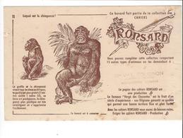 BUVARD  CAHIERS RONSARD   Gorille    ****   A   SAISIR  **** - Papeterie