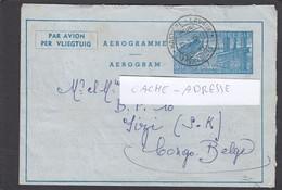 AEROGRAMME DE HASTIERE-LAVAUX POUR LE CONGO BELGE. - Luftpost