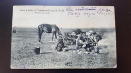 Tashkent Road  - Kyrgyzstan - Kyrgyz People And Horses  - 1910s Sherer Nabgolz - Kyrgyzstan