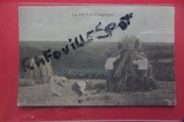 Cp La Vie A La Campagne  Couleur - Cultures