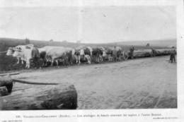 CPA De VILLERS-SOUS-CHALAMONT (Doubs) - Les Attelages De Boeufs... Edition David-Mauvas. N° 198. Non Circulée. B état - France