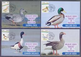 "PAKISTAN - MAXIMUM CARD 1992, Birds Protect Wildlife ""DUCKS"", Complete Set Of 4 Cards - Canards"