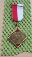 Medaille / Medal - Medaille - Winter Serie Wandeltocht (E.V.B ) Enschede - The Netherlands - Nederland