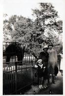 Photo Originale Portrait De Adrienne Lafon & Lucienne En Ballade Au Zoo Posant Devant Un éléphant Vers 1930 - Personnes Identifiées