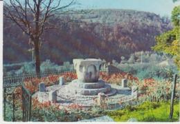 Ciucea Octavian Goga Museum Monument Unused - Monuments