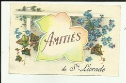 47 - Lot Et Garonne - Sainte Livrade - Amiliés De Ste. Livrade - Fleurs - - Autres Communes