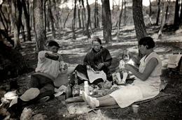 Photo Originale Pique Nique De La Famille Lafon Dans La Forêt De Carry-le-Rouet - Ensuès-la-Redonne (13820) Vers 1930 - Personnes Identifiées