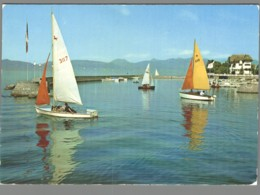CPM 74 - Evian Les Bains - Régates Sur Le Lac Léman - Evian-les-Bains