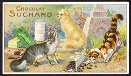 CHROMO Chocolat SUCHARD   Chats    Chinois   Persan  Angora    Serie 147   Cats - Suchard