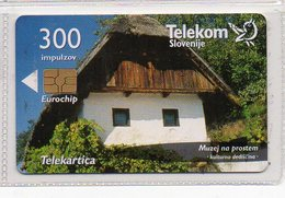 Telekom Slovenije 300 Imp. - LENDAVSKE GORICE - Slovenia