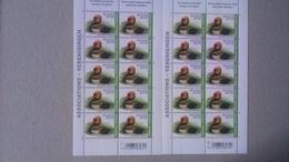 Buzin - Belgique : Nette Rousse ( Timbres Associations Planche 1 Et 2) état Neuf - Feuilles Complètes