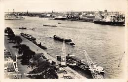 Rotterdam   Maasgezichten  Binnenschip      X 5918 - Rotterdam