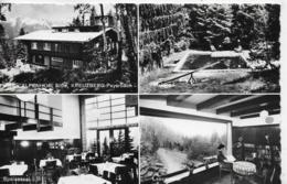 AK 0180  Pension-Alpenhof Kreuzberg-Payerbach - Verlag Ledermann Um 1960 - Raxgebiet