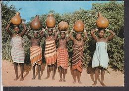 3 Ansichtskarten Kenia , Tribes , Masai  1975 ? - Kenia