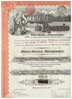 Action Ancienne Société D'Electricité De ROSARIO Action De Dividende - Titre De 1910 Rare - Electricité & Gaz
