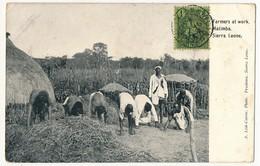 CPA - SIERRA LEONE - MATIMBA - Farmers At Work - Sierra Leone