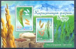 2017. Kyrgyzstan, Flora Of Kyrgyzstan, Rice, S/s Perforated, Mint/** - Kirgisistan