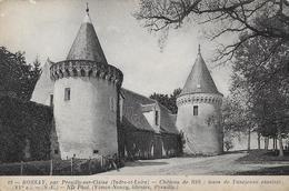 Bossay. Les Tours De L'ancienne Enceinte Du Chateau De Ris. - Autres Communes