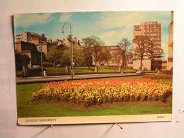 Dundee University - Angus
