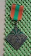 Medaille / Medal - Medaille - CBSN Lemelerberg Wandeltochten 25-8-1984 - The Netherlands - Nederland