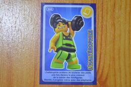 CARTE LEGO AUCHAN N°044 - Autres Collections
