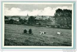 Falaën - Panorama - Neuve TB - Onhaye