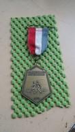 Medaille / Medal - Medaille - Avondvierdaagse Lichtenvoorde 1970 - The Netherlands - Nederland