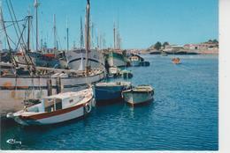 565 ETEL  -  Le Port  - - Etel