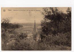 DISON - Panorama Du Sacré-Coeur - Dison