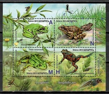 Belarus 2015 Bielorrusia  / Amphibians Frogs MNH Ranas Frösche / Cu11611  C5-25 - Ranas