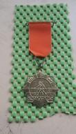 Medaille / Medal - Medaille - Oranjetocht Geesteren (ov) 30-4-1965 - The Netherlands - Nederland
