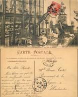 D - [505930]France  - (59) Nord, Loos-les-Lille, Pensionnat De L'éducation Chrétienne, Un Coin Du Musée, Ecoles, Christi - Loos Les Lille