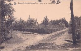 KAPELLEN, CAPPELLEN,  CAPPELLENBOSCH, ALBERTLEI EN SNEPPENDREEF - Kapellen